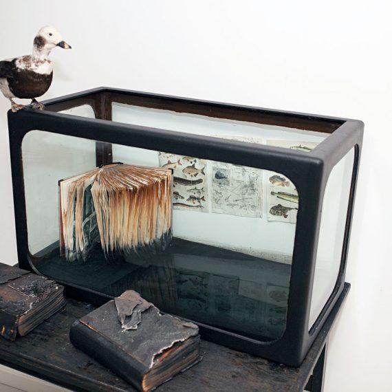 Oppitunteja vedestä, 2012, installaatio