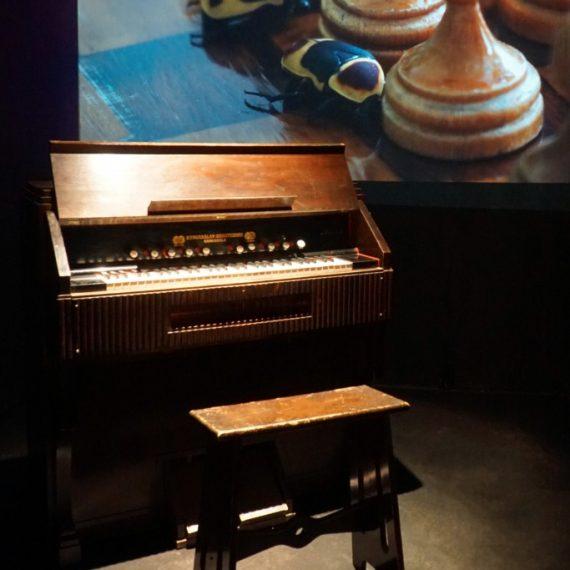 Kuoriaisharmoni, 2019, installaatio, HD video ja urkuharmoni, MUU Galleria, 2020