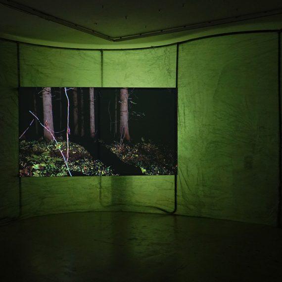 Syvänvihreä metsä ympärilläsi, 2019, videoinstallaatio, kaksi kanavaa, stereoääniraita x 2, MUU Galleria, 2020