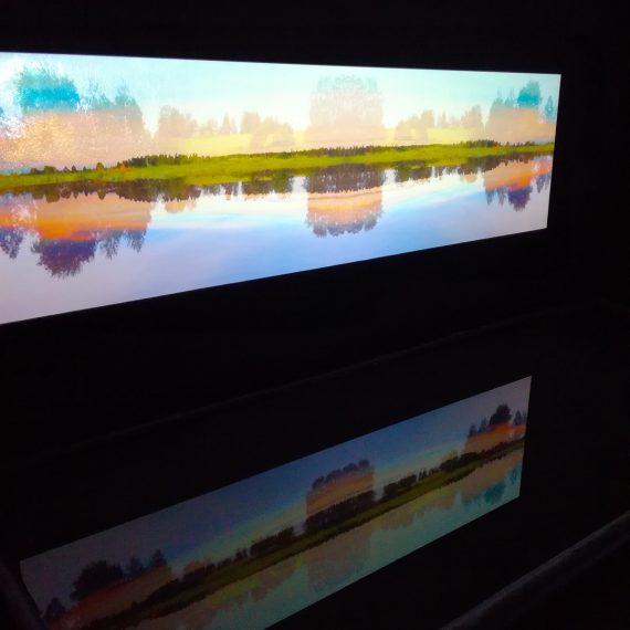 ELYTRA, 2017, mediainstallaatio, video ja heijastus vesialtaaseen, kuva: Galleria Rajatila, 2017