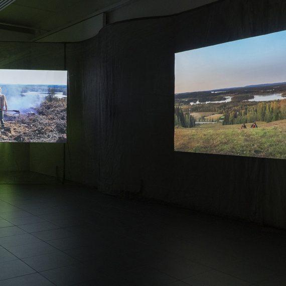 Syvänvihreä metsä ympärilläsi, 2020, videoinstallaatio, kaksi kanavaa, stereoääniraita x 2